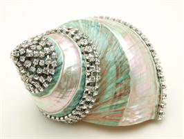 Jewel encrusted sea shell by  Thorson Hosier