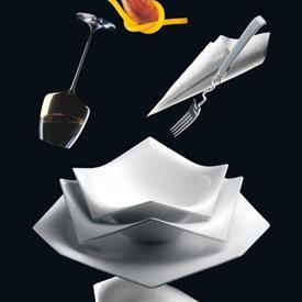a_la_carte_oragami_china_dinnerware_by_rosenthal.jpeg