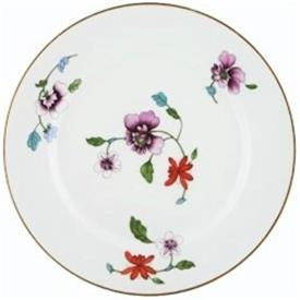 astley_royal_worcest_china_dinnerware_by_royal_worcester.jpeg