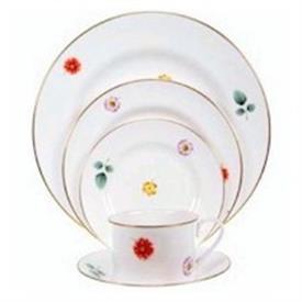 astor_spode_china_dinnerware_by_spode.jpeg