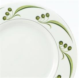bel_air___haviland_china_dinnerware_by_haviland.jpeg