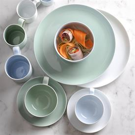 choices_green_china_dinnerware_by_portmeirion.jpeg