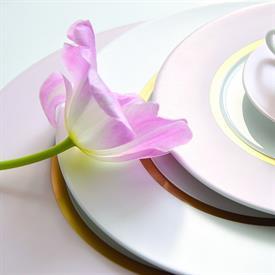 cronos_rose_china_dinnerware_by_bernardaud.jpeg