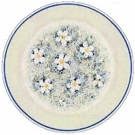 dewdrops_lenox_china_dinnerware_by_lenox.jpeg