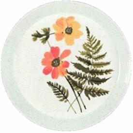 fern_valley_china_dinnerware_by_mikasa.jpeg