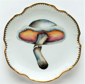 Picture of FOREST MUSHROOMS by Anna Weatherley