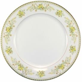 green_briar_china_dinnerware_by_mikasa.jpeg