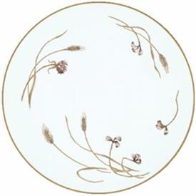 harvester_china_dinnerware_by_noritake.jpeg