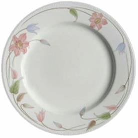 hyde_park_china_dinnerware_by_mikasa.jpeg