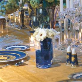 medusa_blue_china_dinnerware_by_versace.jpeg