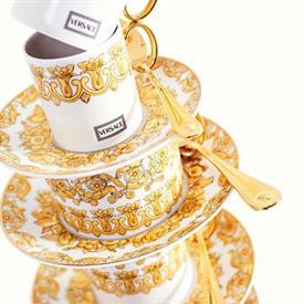 medusa_rhapsody_china_dinnerware_by_versace.jpeg