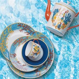 oceane_coraux_china_dinnerware_by_haviland.jpeg