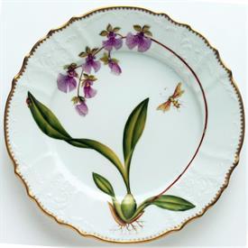 orchids_china_dinnerware_by_anna_weatherley.jpeg