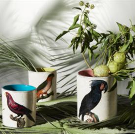 perroquets_china_dinnerware_by_richard_ginori.png