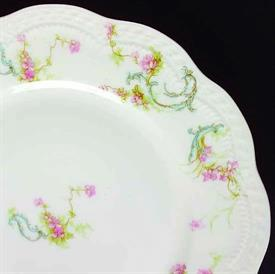 princess__france_china_dinnerware_by_haviland.jpeg