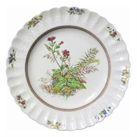 Picture of ROSALIE-SPODE by Spode