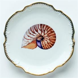 Picture of SEASCAPE-SHELL by Anna Weatherley