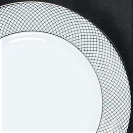 siam_platinum_china_dinnerware_by_rosenthal.jpeg