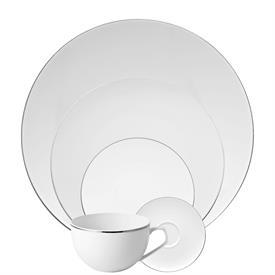 tac_02_platinum_china_dinnerware_by_rosenthal.jpeg