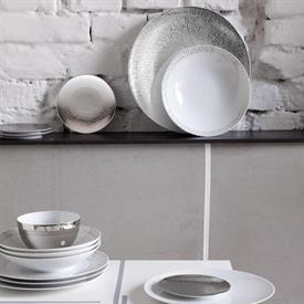 tac_02_skin_platinum_china_dinnerware_by_rosenthal.jpeg