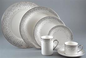 trousdale_platinum_china_dinnerware_by_kelly_wearstler.jpeg