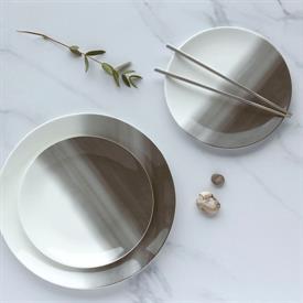 vera_degradee_china_dinnerware_by_vera_wang_wedgwood.jpeg