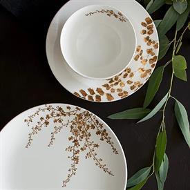 vera_jardin_china_dinnerware_by_vera_wang_wedgwood.jpeg