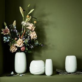 vesi_china_dinnerware_by_rosenthal.jpeg