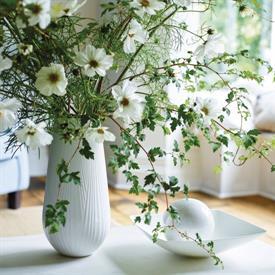 white_folia_china_dinnerware_by_wedgwood.jpeg