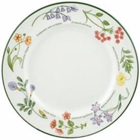 wild_flowers_china_dinnerware_by_johnson_brothers.jpeg