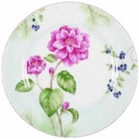winter_garden_china_china_dinnerware_by_lenox.jpeg