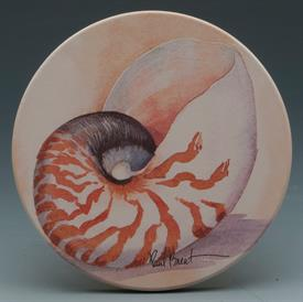 -SHELLS COASTERS S/4 VARIETY OF SHELLS FROM THE OCEAN.4X4 ROUND,