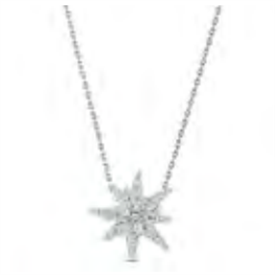 _:2020 SCS EDELWEISS PENDANT. AVAILABLE FOR PURCHASE TO SCS MEMBERS ONLY.